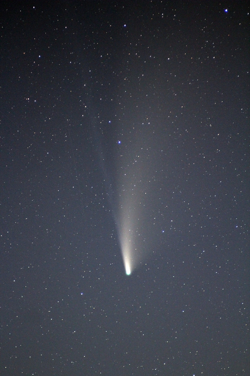 Comet C/2020F3 (NEOWISE)